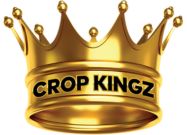 CROP KINGZ - CROWN