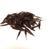 132 014 Pine Needles Dark.JPG