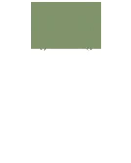 300WhiteRow FloristFooter Wgrassgreen copy.png
