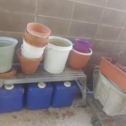lots of flower pots.jpg