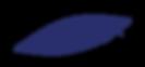 Formes_bleu_fond-transparent-02.png