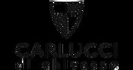 LogoCarlucci.png