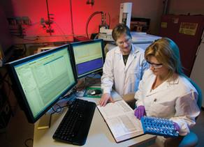 O pensamento estratégico para inovação e saúde no desenvolvimento da indústria de Cannabis Medicinal
