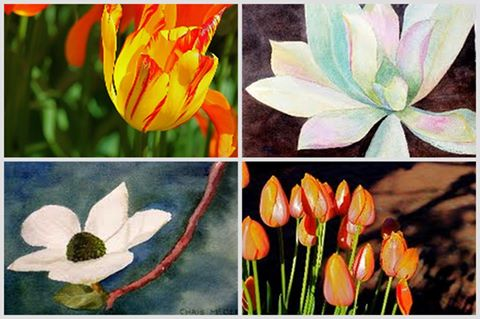 mcclellan flower composite