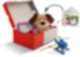 shoebox-with-toys3 (2).png