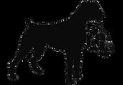 Media SouthPaw Boxer Rescue logo transpa
