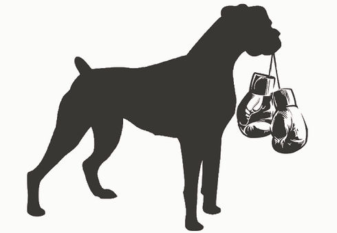 Media SouthPaw Boxer Rescue logo.jpg