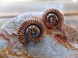 Ammonite cufflinks