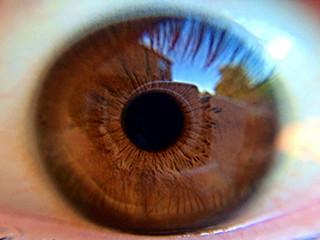 Eyes Unveiled