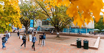 UNC Chapel Hill - The Pit Area Sidewalks (Chapel Hill, NC)
