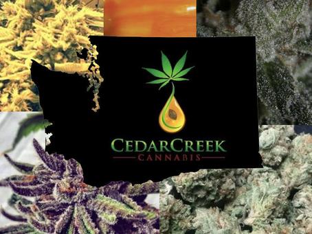Cedar Creek Cannabis | Pluto