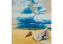 Shells, Mixed media on cardboard, 90 x 100 cm