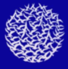 Global Doves of Peace - Ali Al Mahmeed