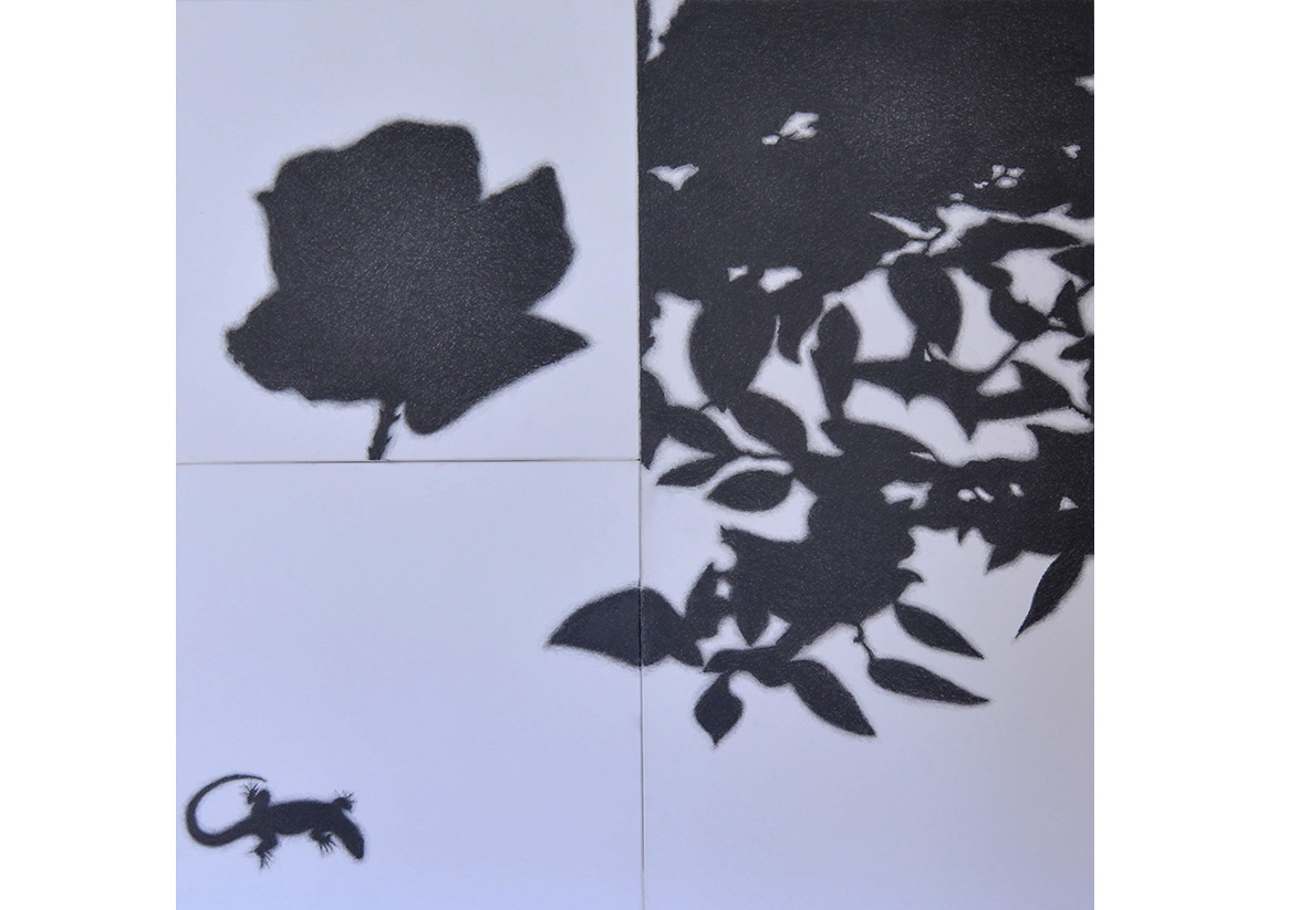 GIARDINO, 2018, pencil on paper, cm.80x80