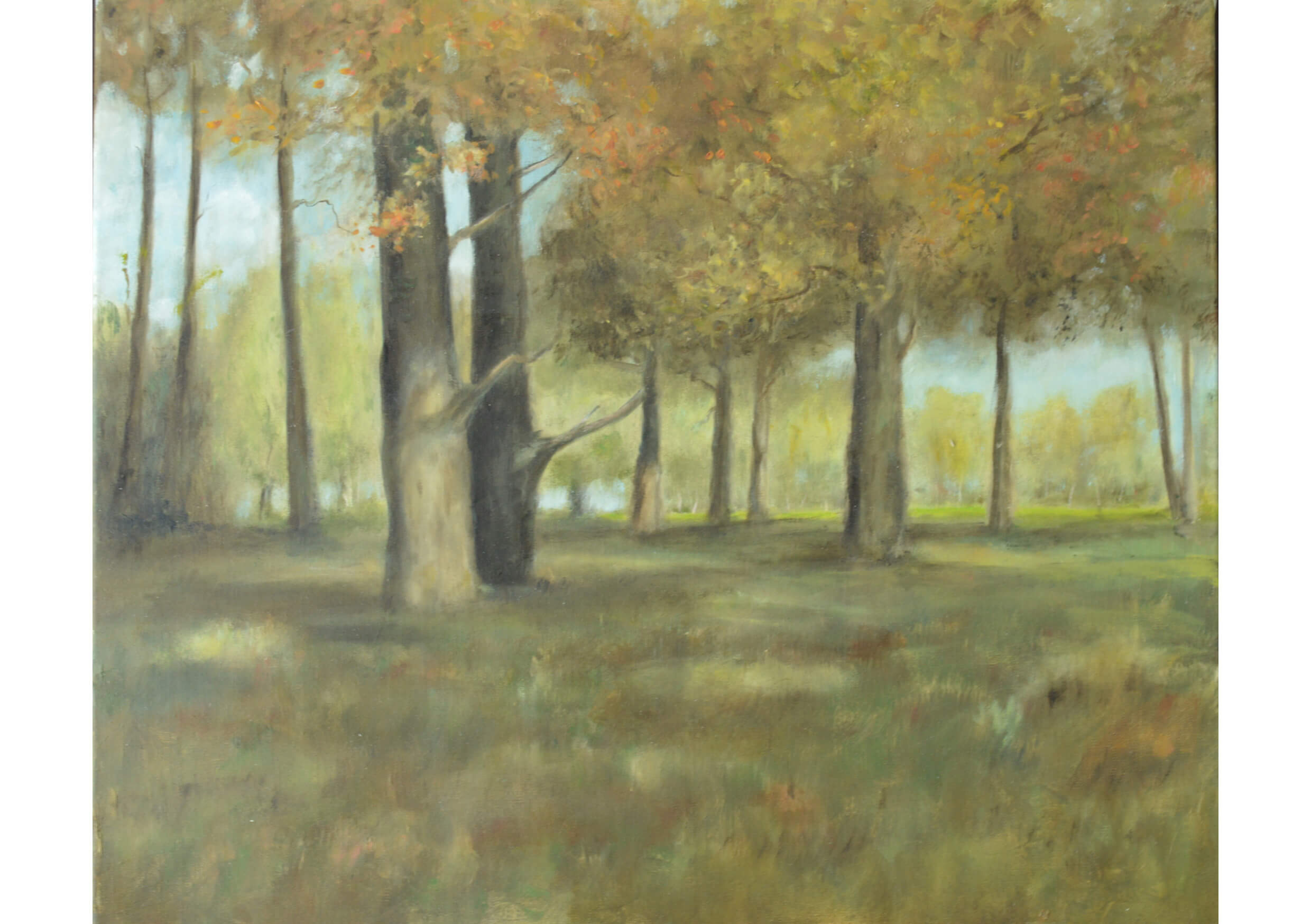 The Trees, Oil on canvas, 46 x 55 cm