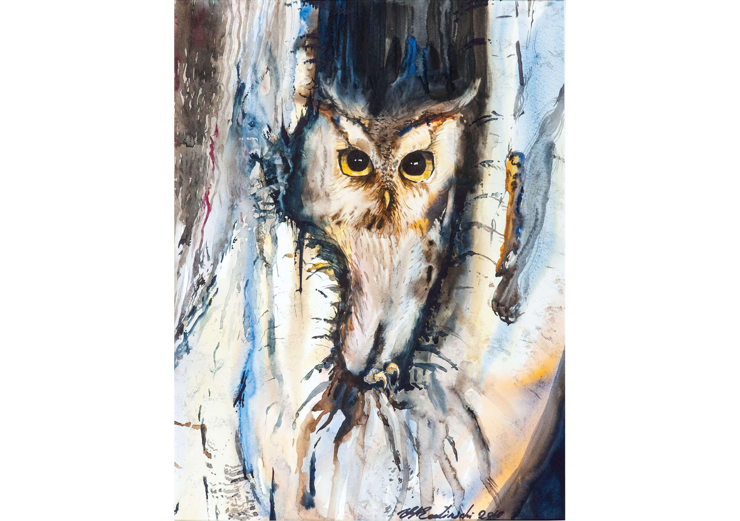 Owl II, Watercolour on paper, 70 x 52 cm