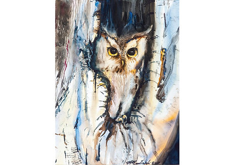 Owl II, Watercolour on paper, 70 x 52 cm