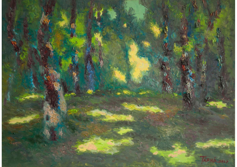 Shadows, Oil on canvas, 50 x 70 cm