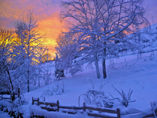 Top5 Home Care Tasks for Winter
