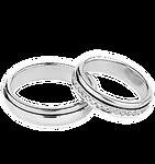 ring no bg.png