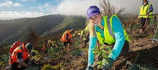 porthills-volunteer-855x380.jpg