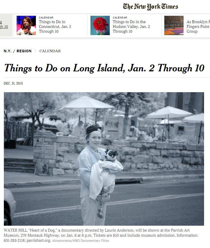 nytimes artist janice sztabnik