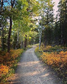 Trail to Archery.jpg