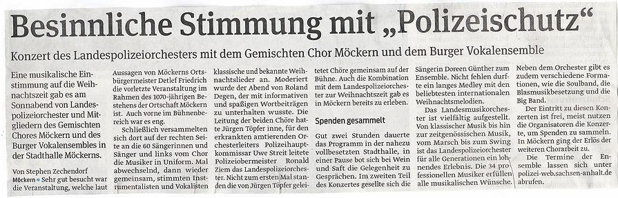 Konzert_Möckern.jpg