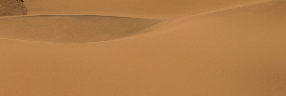 Sand Sea, Namibia, Africa. August, 2015.