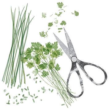 Herbs&scissorsWaitrose.jpg