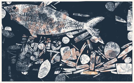 ClaireHarrupIllustrationFossilFish.jpg