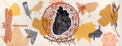 Fragile Awareness; Heart