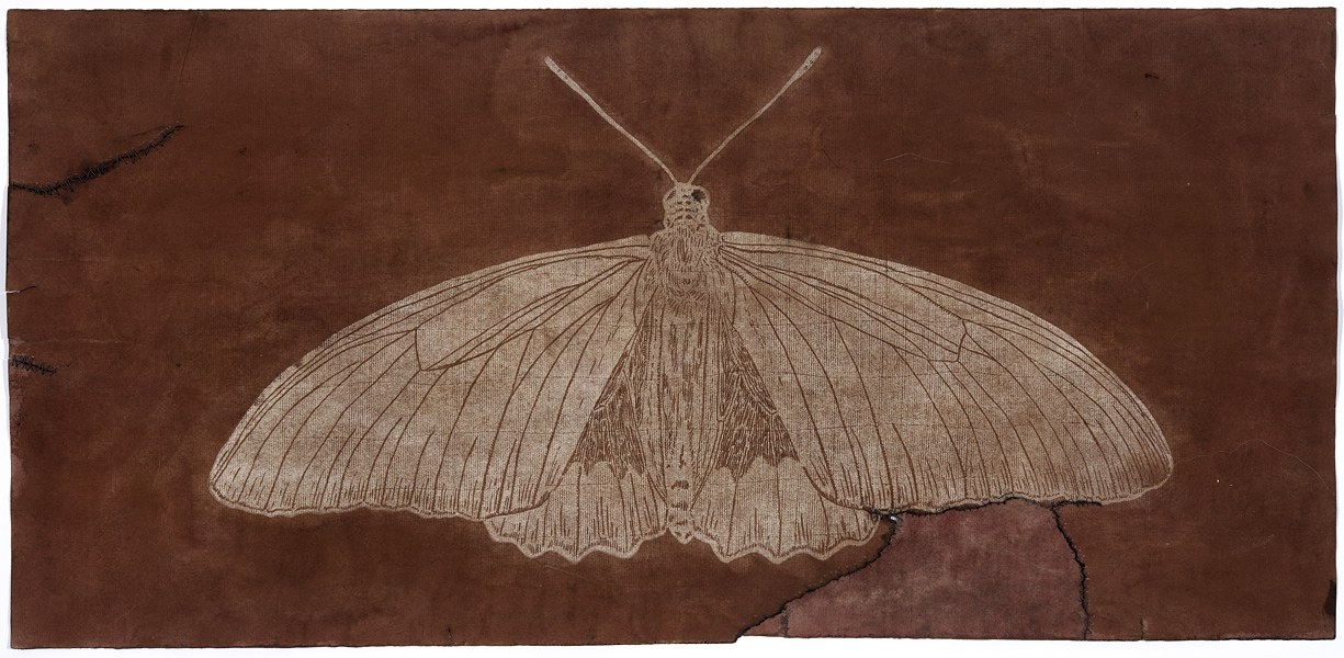 Ancient Moth #2