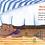 Thumbnail: Алдонина Римма / Однажды Вася Булкин… (илл. Пелихович Юлия)
