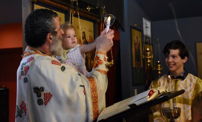 Pic - Palm Sunday, Ia w Fr. M, raises ca