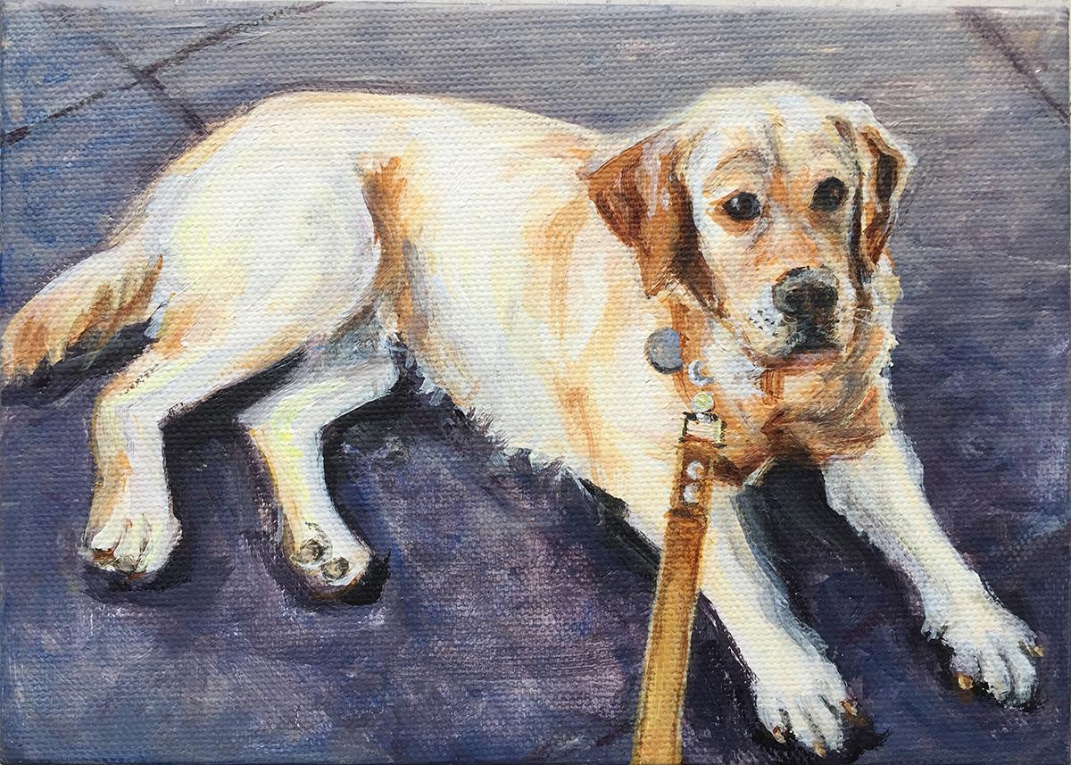 """Pet portrait, 5"""" x 7"""""""