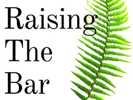 Book Review: Raising the Bar by Nikki Alderson