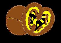 walnut_edited.png