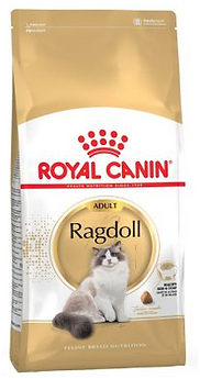 Croquette ragdoll adulte.png