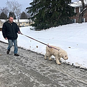Putting David to work - walking our week