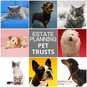 Even Your Pet Needs an Estate Plan