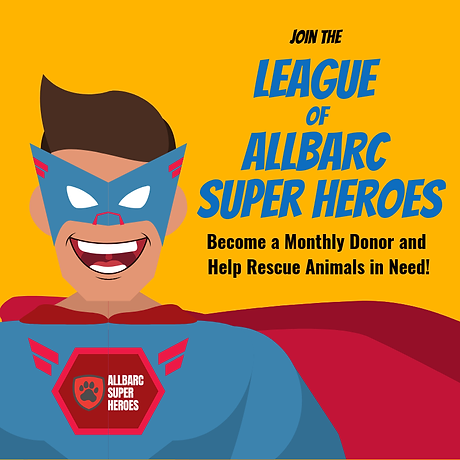ALLBARC Superhero