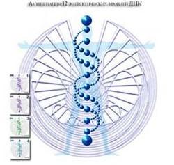 Генетический подход чампиона тойча