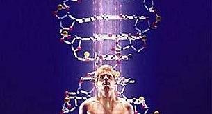 """Трансформация памяти ДНК в Тета и Дельта"""""""