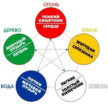 Целебное прикосновение  Красноярск Универсум