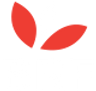 BRF Logo.png