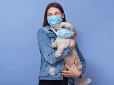 Pets and the Pandemic