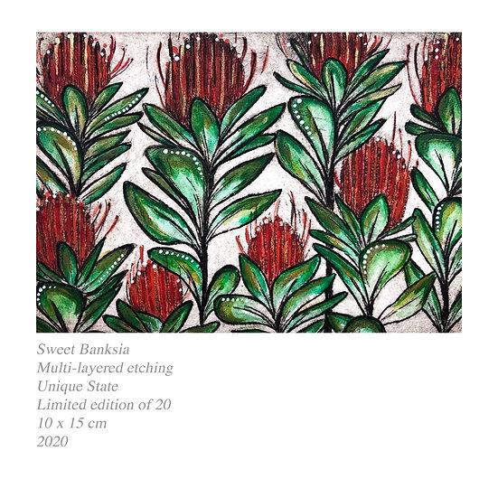 Original Etching 'Sweet Banksia'