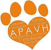 Apavh adopter un chien montpellier