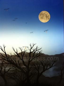 Fireflies By Moonlight